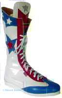 Click to see our range of wrestling boot